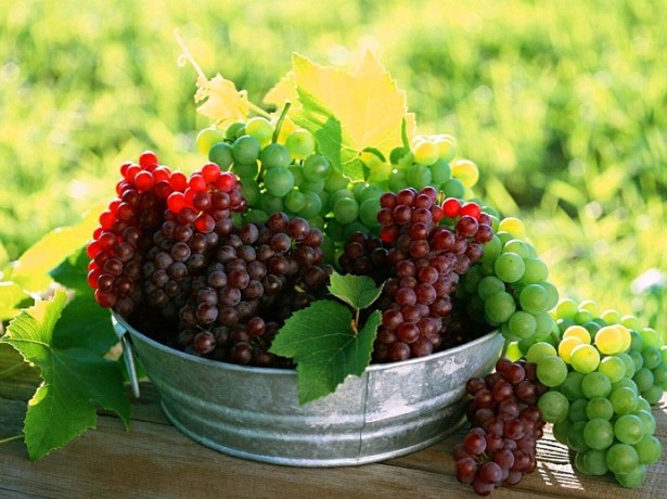 вино из сока винограда