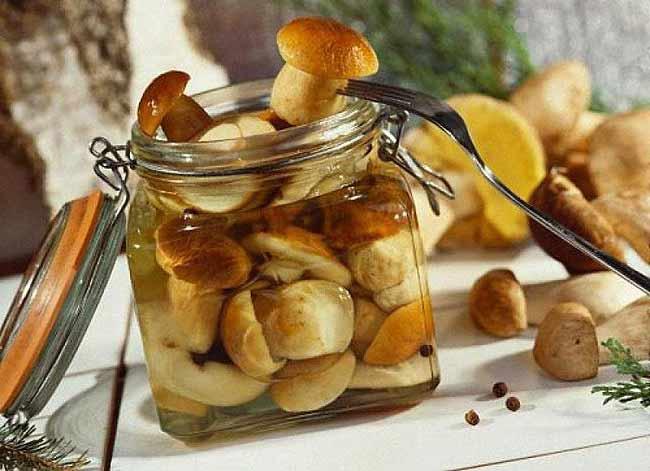 Рецепты маринованные белые грибы на зиму
